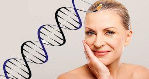 huidveroudering genetisch bepaald